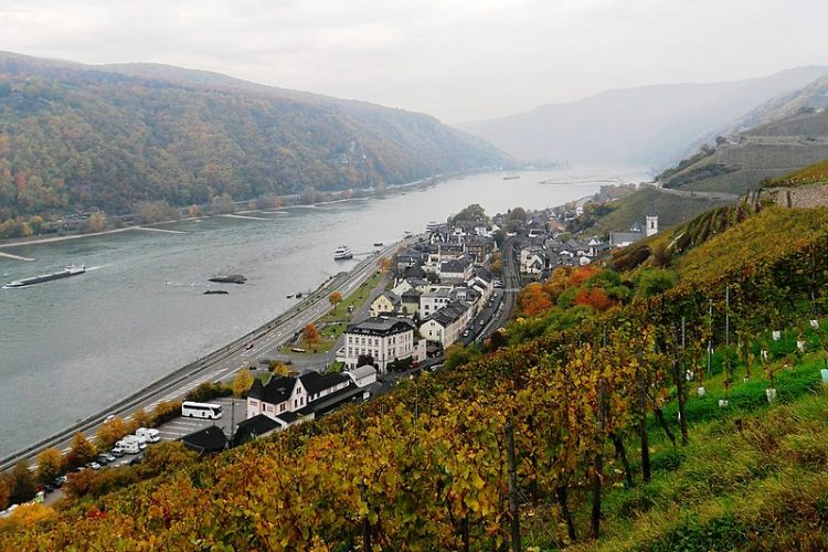 Symbolic photo: Road and rail along the right bank of the Rhine